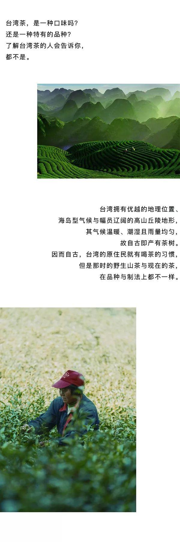 深圳,家具展,设计周,深圳设计周,茶文化,茶空间,品茶